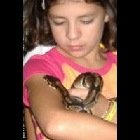 Animal & Reptile Shows by Nadine